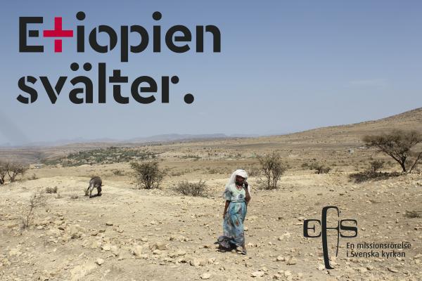 Etiopien svälter!  Internationell kväll med rapport om läget