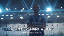 Nyförvärv | Adam Bergmark Wiberg