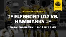 SM–final U17: IF Elfsborg – Hammarby IF