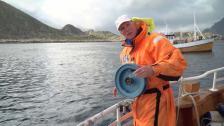 Fiske på Lofoten - succé eller bottennapp?