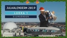 Kotschacks julkalender – lucka 1: Djurgården