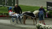 Ponny landsleir - løp 8, lørdag