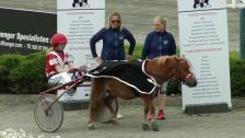 Ponny landsleir - løp 2, lørdag